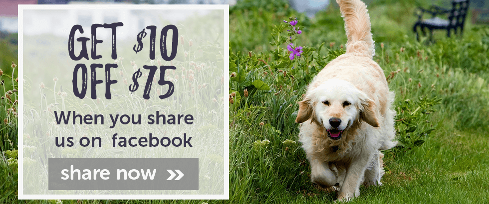 Save $10 on $75 when you share us on Facebook