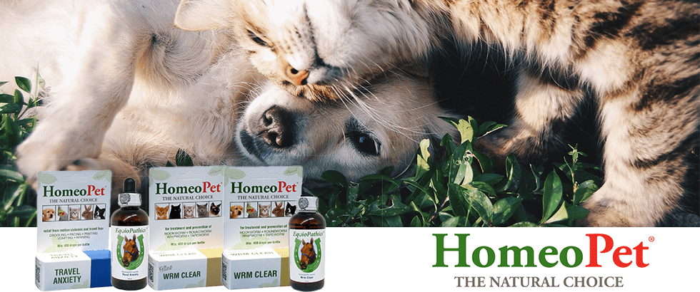 Shop Great Homeopet Products and Sales