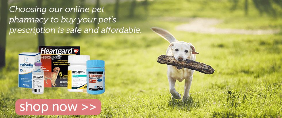 Shop our Certified Pet Pharmacy