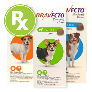 Bravecto Rx Chews for Dogs