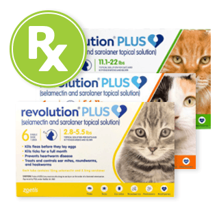Rx Revolution Plus Topical Solution, Feline