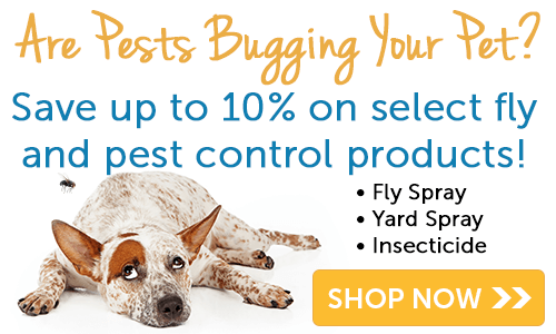 Fly and Pest Control