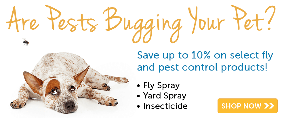 fly and pest control sale