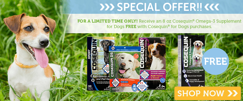 Free Omega 3 For Dogs with any Cosequin for Dogs Purchase