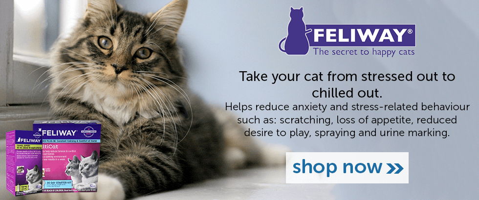 Feliway - Help your cat go from stressed out to chilled out