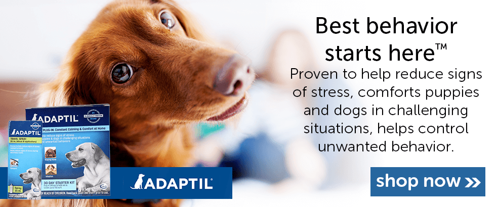 Adaptil - Best Behavior Starts Here
