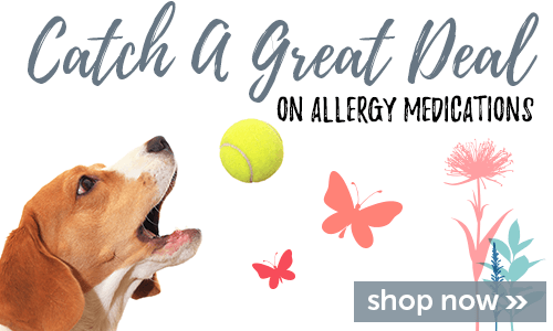 Catch a great deal on allergy meds