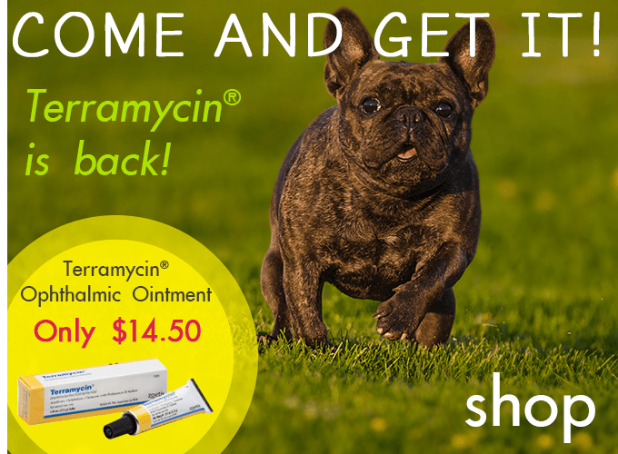 Terramycin is Back at PetSupplies4Less.com