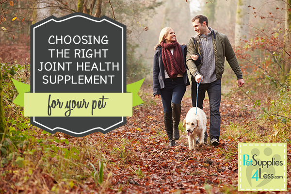 Choosing a Cosequin joint supplement for your dog.